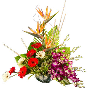Fashionable Mixed Flowers Arrangement with Pure Passions