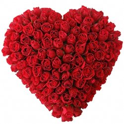 Summery Love Delight Arrangement of 101 Fresh Red Roses in Heart Shape