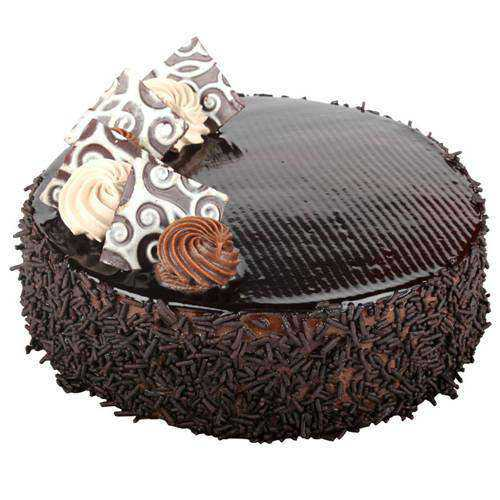 Succulent Chocolate Cake