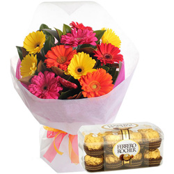 Freshly Picked Mixed Gerbera Bouquet with Luxurious Ferrero Rocher Chocolates