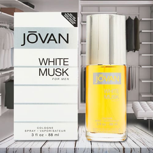 Delightful Jovan White Musk Cologne for Men