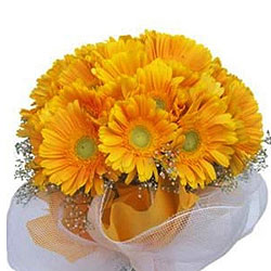 Dreamy Sunshine Bundle of Yellow Gerberas