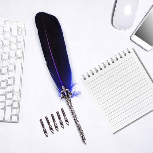 Marvelous Calligraphy Quill Set