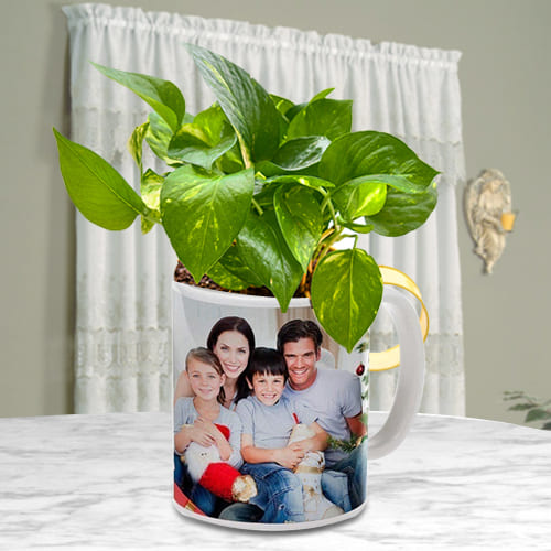 Remarkable Money Plant in Customized Coffee Mug