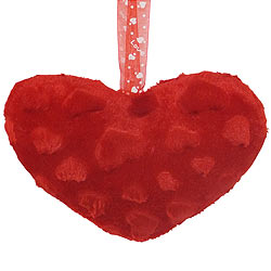 Charming Heart Shaped Cushion