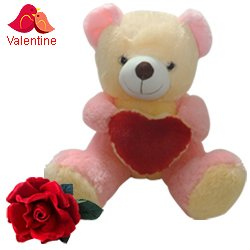 Love Teddy With Heart with a Velvet Red Rose